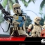 Hot Toys MMS389 ROGUE ONE: A STAR WARS STORY - SHORETROOPER thumbnail 3