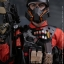 VTS TOYS VM-018 THE DARKZONE AGENT - RENEGADE thumbnail 20