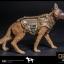 DAMTOYS No.78040, No.78040-1 DEVGRU K9-handler in Afghanistan thumbnail 25