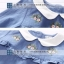Pre-order เสื้อเชิ้ต / แพ็คละ 5 ตัว / สีฟ้า thumbnail 3