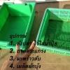ปลูกผักบุ้งในตะกร้า ระบบน้ำนิ่ง DFT (รวมตอน 1- 4) ฉบับสมบูรณ์