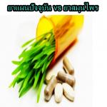 ยาแผนปัจจุบัน vs ยาสมุนไพรกินร่วมกันได้จริงหรือ