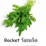 เมล็ดร๊อคเก็ต Rocket