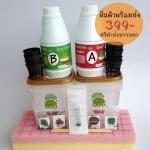 ชุด Starter Kit : Family Pack