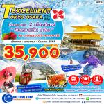 NRT13_EXCELLENT TOKYO OSAKA 6 วัน 3 คืน (01 มกราคม - 31 มีนาคม 2561)
