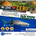 CE1 IN LOVE@CEBU 5 วัน 2 คืน (กรกฎาคม - ตุลาคม 61)