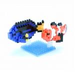 Clownfish & Palette Surgeonfish