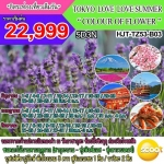 "JP06 TOKYO LOVE LOVE SUMMER ""COLOR OF FLOWER"" (วันนี้-ก.ย.60)"