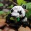 Giant Panda thumbnail 1
