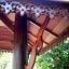 ศาลาบาหลี ศาลาไม้ เสากลมและเอียง หลังคาสองชั้น ไม้เนื้อแข็งรวม ศาลาไม้แต่งบ้าน แต่งสวน thumbnail 6