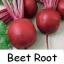 หัวบีท (พันธุ์ดีทรอย์) Beet Root thumbnail 1