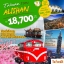 TW05 ไต้หวัน อาลีซาน 5D 3N ( พ.ค-ต.ค 60 ) thumbnail 1
