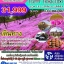 JP07 HAPPY HOKAIDO SLOW LIFE SPRING&SUMMER (วันนี้-ก.ค.60) thumbnail 1