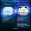 Abalone Beauty Cream ครีมหน้าเรียว (50 g) thumbnail 2