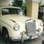 ขายด่วน!!! รถโบราณ Benz 220 สีขาว หายาก อายุกว่า 50ปี!! thumbnail 1