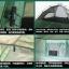 (พรีออเดอร์) Pre-order เต็นท์สนาม สำหรับนักท่องเที่ยว เต็นท์แคมป์ปิ้งกันน้ำได้ กันลมได้ แบบ 2 ประตู หลังคา 2 ชั้น โครงหลังคาแยก สีเขียว มีเสื่อปูพื้น thumbnail 8