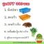 ชุดปลูกผักไฮโดรระบบ DFT ชุดเล็ก (ระบบน้ำนิ่ง) **ฟรีค่าส่ง ปณ.ธรรมดา** thumbnail 1