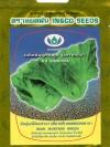 ผักกาดเขียว มณีจันทร์121 (เขียวปลี)