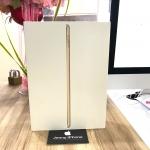 iPad 2017 Wifi 32 Gb Gold