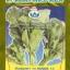 ผักกาดเขียว มุกดา14 (เขียวน้อย) thumbnail 1