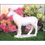 ม้าขาวเรียบ