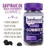 วิตามินเสริมภูมิคุ้มกันชนิดกัมมี่ Sambucol Black Elderberry Gummies