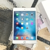 iPad Mini4 Wifi 16 Gb Gold สีทอง