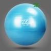 บอลโยคะ Z ขนาด 85CM หนาพิเศษ รับน้ำหนักมากกว่า 300 YK1048P