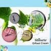 ครีมชิเนเต้ เบบี้เฟซ Shinete Cream ชะลอริ้วรอยที่เกิดก่อนวัย ต่อต้านอนุมูลอิสระ