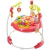 เก้าอี้กิจกรรมกระโดดดึ๋งสีชมพูแสนหวาน Fisher-Price Pink Petals Jumperoo
