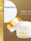 MTI Night Cream / ครีมบำรุงก่อนนอน เอ็มทีไอ