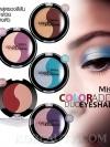 Mistine Coloraddict Duo Eyeshadow / มิสทิน/มิสทีน คัลเลอร์ แอดดิคท์ ดูโอ้ อายแชโดว์