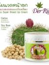 เดอลิเซ่ ครีมนวดอกผสม ตะบองเพชร และถั่วเหลือง / Derlise Cactus Super Breast Up Cream
