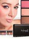 Minstine Professional Complete Palette / มิสทิน/มิสทีน โปรเฟซชันนัล คอมเพลีท พาร์เล็ต