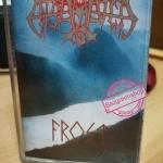 ENSLAVED อัลบั้ม FROST (1994)