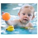 Pool Floats & Pool Items