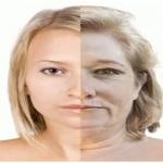 คอลลาเจน [Collagen] กับประโยชน์ที่ควรรู้