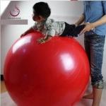 บอลโยคะ ขนาด 150CM ใหญ่พิเศษ YK1022P
