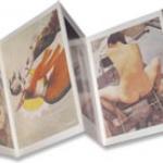 อัลบั้มภาพ-เทปคาสเซ็ท-ของสะสม