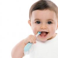 แปรงสีฟัน ยาสีฟัน & อุปกรณ์ดูแลช่องปากของลูกน้อย - Children's Oral Care