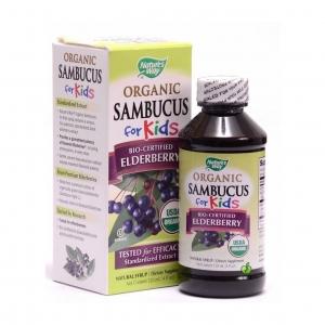 วิตามินเสริมสร้างภูมิคุ้มกันสำหรับเด็กแบบออแกนิก Nature's Way Organic Sambucus for Kids (120 ml.)