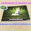 กรอบลอยผ้าแคนวาส 20x24 นิ้ว thumbnail 1