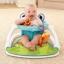 เก้าอี้แสนสนุกเสริมพัฒนาการ Fisher-Price Sit-Me-Up Floor Seat (Froggy Edition) thumbnail 7
