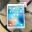 iPad Air2 Wifi 64 Gb Gold สีทอง thumbnail 1