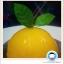 เค้กส้ม thumbnail 5