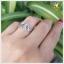 แหวนนพเก้า ใบมะกอก เงินแท้ ชุบทองคำขาว thumbnail 5