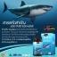 น้ำมันตับปลาฉลาม thumbnail 3