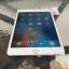 iPad Mini4 Wifi 16 Gb Gold สีทอง thumbnail 3