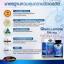 กลูโคซามีน ป้องกันข้อเสื่อม thumbnail 11