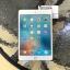 iPad Mini4 Wifi 16 Gb Gold สีทอง thumbnail 1